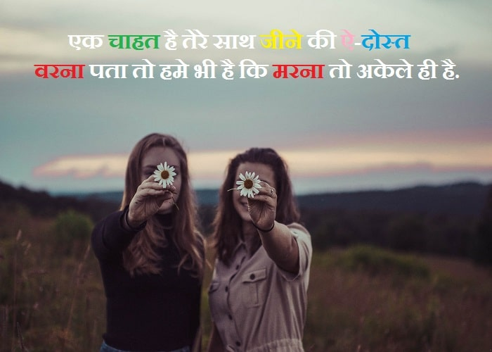 My True Friend 10 Best Hindi Status Latest_Quotes Networks