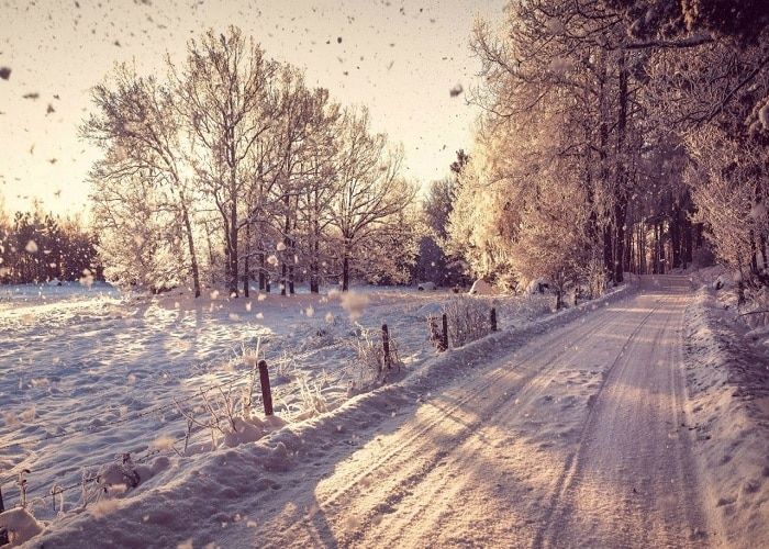 Winter Solstice 2020: Today's Shortest Day, Now It'll Be Very Cold