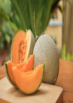 Immunity Formula From Strengthening Immunity To Preventing Old Age, There Are Many Reasons To Eat Melon