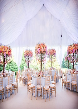 Wedding Venues Become The Beauty Of A Great Wedding Everyone Enjoys